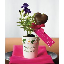 Mini Garden Flower Pot Wedding Favors (pkgs of 6)